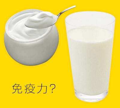風邪予防に牛乳・ヨーグルト!! その1